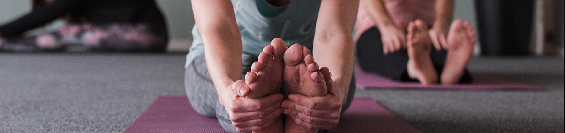 Hatha Yoga Zensa Yoga